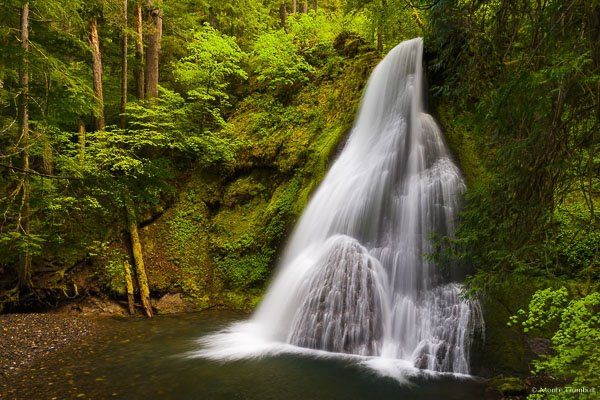 The Little River drops delicately over Yakso Falls into a deep pool surrounded by vibrant spring greenery in the Umpqua National Forest in Oregon.